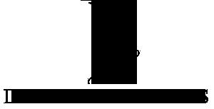 Design Principles Inc. Mobile Logo